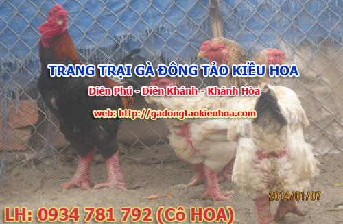 chuong nuoi ga bo me